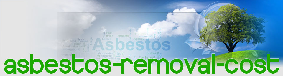 Asbestos Removal Cost The Dangers Of Asbestos